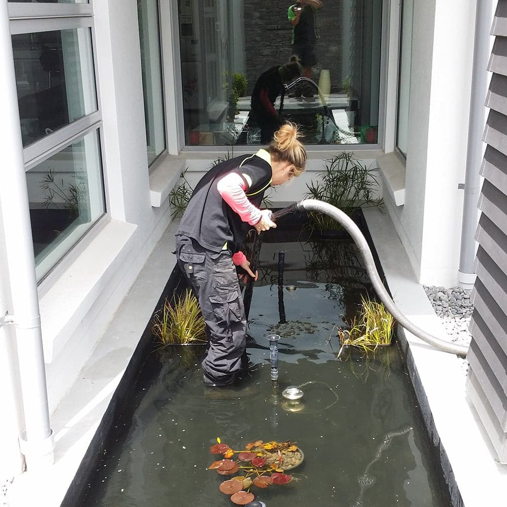 Pond Maintenance and Cleaning Christchurch