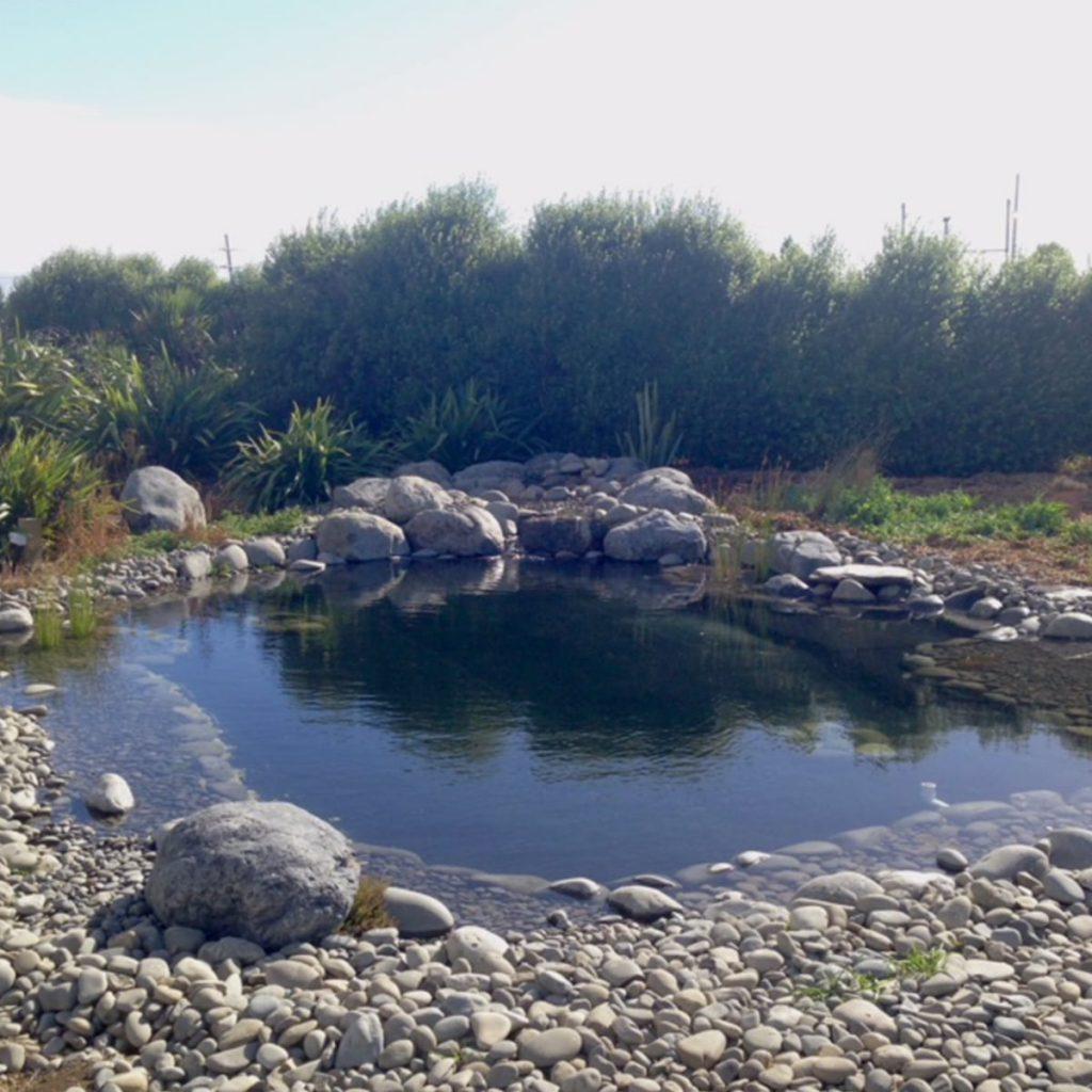 The Pond Company, Christchurch
